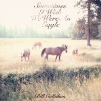 Purchase Bill Callahan - Sometimes I Wish We Were An Eagle