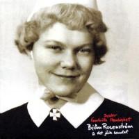 Purchase Björn Rosenström - Syster Gunbritts Hemlighet