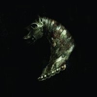 Purchase Black Math Horseman - Wyllt