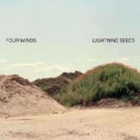 Purchase Lightning Seeds - Four Winds