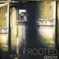 Purchase Sekoya - Rooted