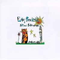 Purchase Edie Brickell & New Bohemians - Shooting Rubberbands At The Stars
