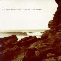 Purchase Polygon Window - Surfing on Sine Waves