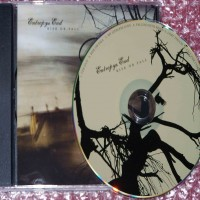 Purchase Entropys End - Rise Or Fall