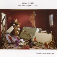 Purchase Sonic Youth - The Destroyed Room: B-Sides and Rarities