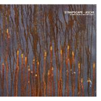 Purchase Synapscape & Asche - Scenes From A Galton's Walk