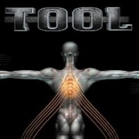 Purchase Tool - Salival