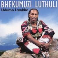 Purchase Bhekumuzi Luthuli - Udumo Lwakhe