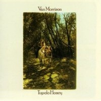 Purchase Van Morrison - Tupelo Honey (Vinyl)