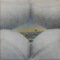 Purchase Bruce Cockburn - Salt, Sun and Time