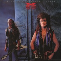 Purchase mcauley schenker group - perfect timing