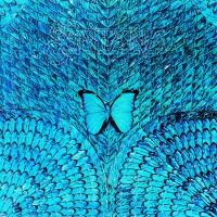 Purchase Santana - Borboletta (Vinyl)