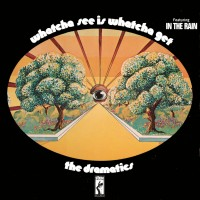 Purchase The Dramatics - Whatcha See Is Whatcha Get (LP