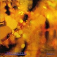 Purchase Steamhammer - Reflection