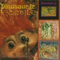 Purchase Dinosaur Jr. - Fossils