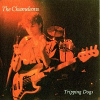 Purchase The Chameleons - Tripping Dogs