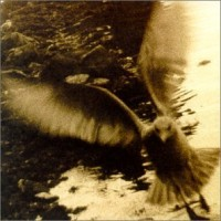 Purchase VA - Take Me Home: A Tribute to John Denver