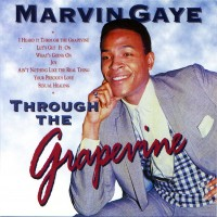 Purchase Marvin Gaye - 1993  -  Marvin Gaye In Concert (Live) 1993