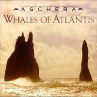 Purchase Aschera - Whales Of Atlantis
