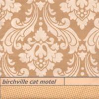 Purchase Birchville Cat Motel - Long Vanished Spirals
