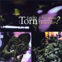 Purchase David Torn - What Means Solid, Traveller?