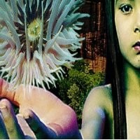 Purchase Future Sound Of London - Lifeforms