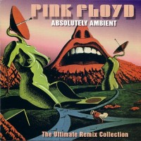 Purchase Pink Floyd - Absolutely Ambient