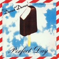 Purchase Duran Duran - Perfect Day (Single)