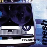 Purchase Mesh - Fragmente
