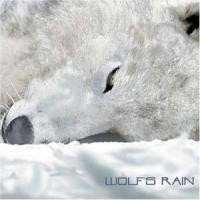 Purchase Yoko Kanno - Wolf's Rain