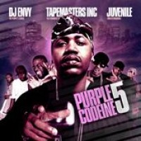 Purchase VA - Dj Envy & Tapemasters Inc. - Purple Codeine 5