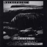 Purchase Necrophorus - Yoga