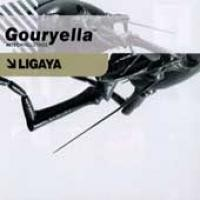 Purchase Gouryella - Ligaya (The Hardstyle Remixes) (Vinyl)