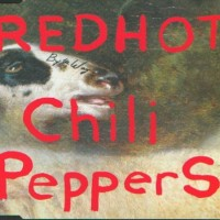 Purchase Red Hot Chili Peppers - By The Way (CDS) CD2