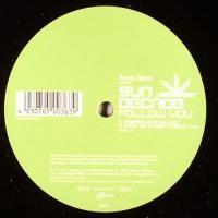 Purchase Sun Decade - Follow You (Promo Vinyl)