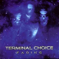 Purchase Terminal Choice - Fading (Maxi)