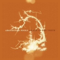 Purchase Abandoned Pools - Armed To the Teeth