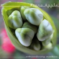 Purchase Fiona Apple - Extraordinary Machine