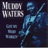 Purchase Muddy Waters - Got My Mojo Workin'