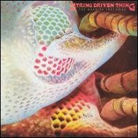 Purchase String Driven Thing - The Mashine That Cried - The Early Years