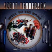 Purchase Scott Henderson - Well To The Bone