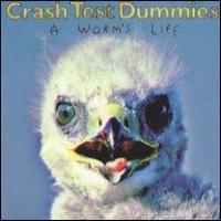 Purchase Crash Test Dummies - A Worm's Lif e