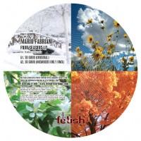 Purchase Mario Fabriani - Winter In Bahia EP WEB