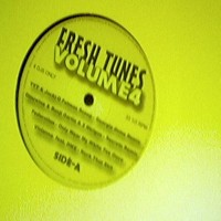 Purchase VA - Fresh Tunes Vol 4 Vinyl