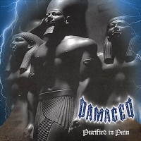 Purchase Damaged - Purified In Pain