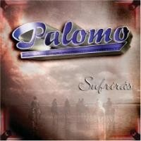 Purchase Palomo - Sufriras