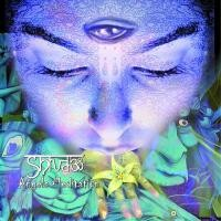 Purchase Shiva3 Project - Angels Meditation