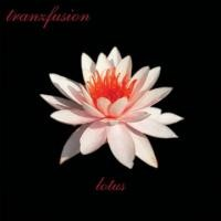 Purchase Tranzfusion - Lotus