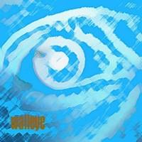 Purchase Walleye Slim - 13 Songs