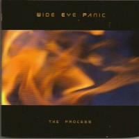 Purchase Wide Eye Panic - The Process